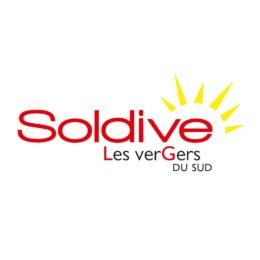 Logo Melons Soldive