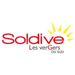 logo soldive